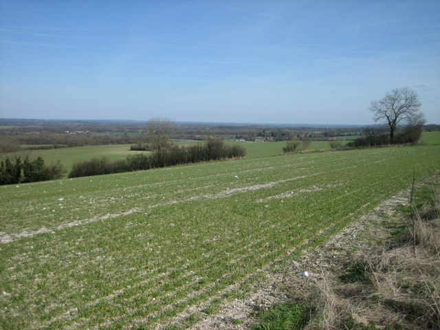 View From the Hogs Back - Facing North East