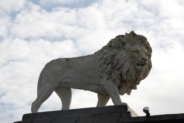 Llew Glynllifon Lion