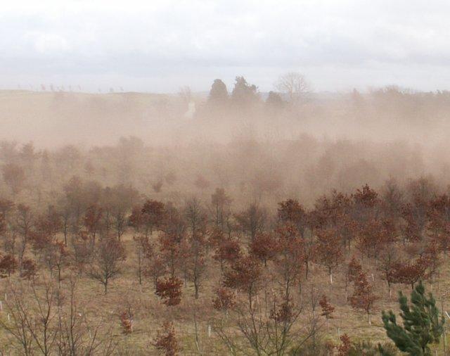 Soil erosion, Southfield