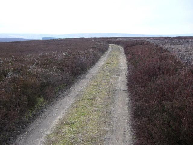 Track on Egton High Moor