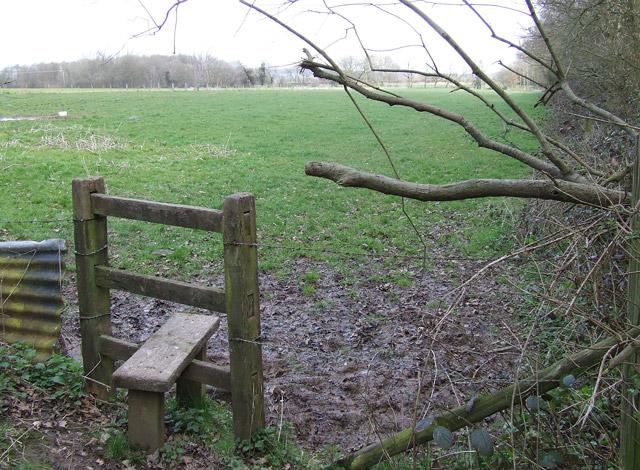 Public Footpath - Grazing Land - Salter's Park Farm