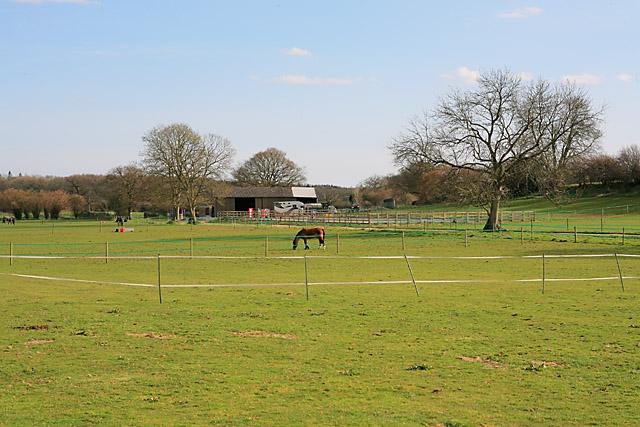 Whites Park Equestrian, Newton