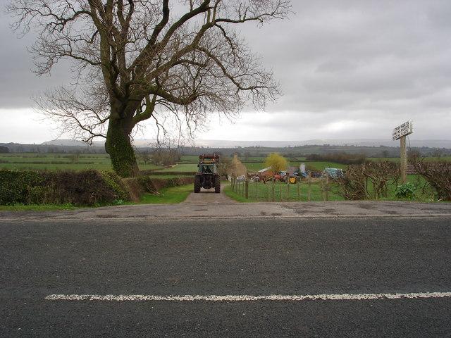 Farm Track leading to Saltkiln Farm.
