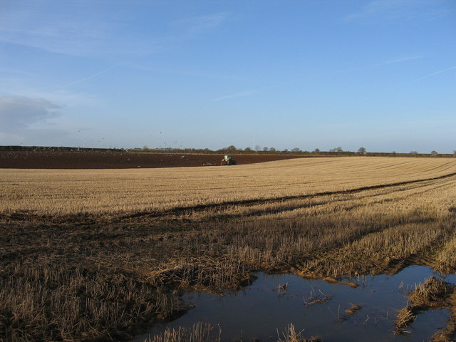 Arable land between Syderstone and South Creake