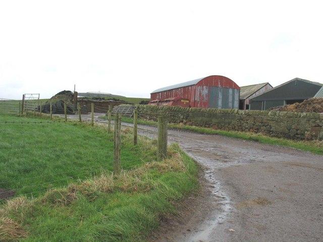 Farm buildings East Backs Farm.