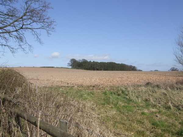New ploughed field