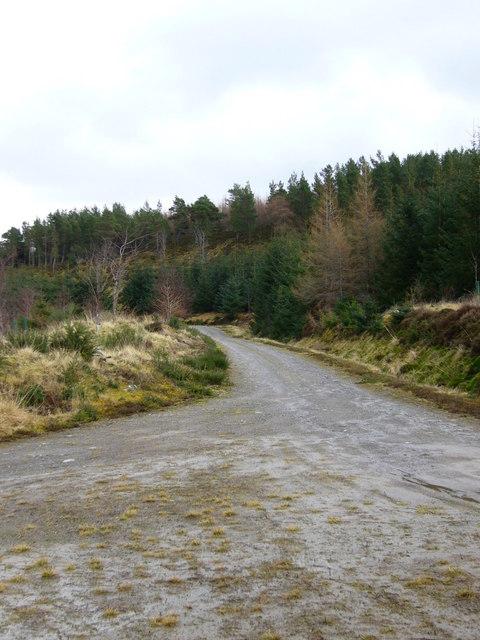 Forestry track to Culnaskeath