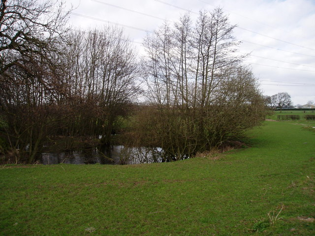 Pond and fields near Winterbottom  near High Legh
