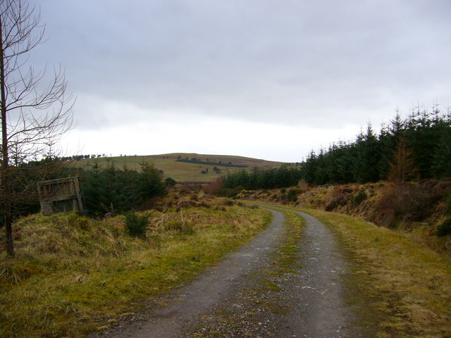 Cnoc Mhabairn forestry track