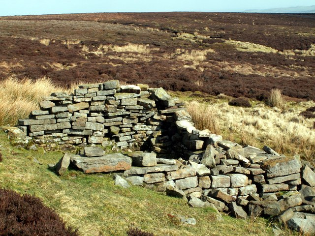 Remains of a Cabin on Cabin Hill