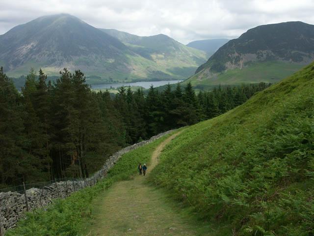 Track above Holme Wood