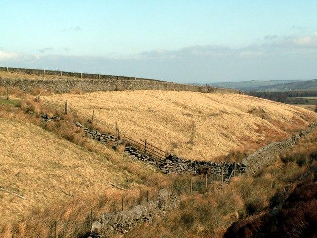 A Long Field