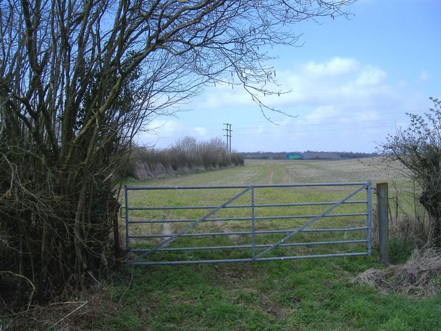 Woodlands field, near Kemble Wick