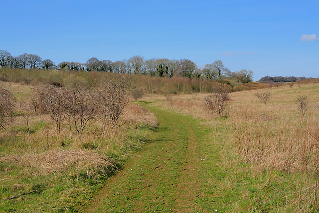 Approaching Collin's Copse on bridleway