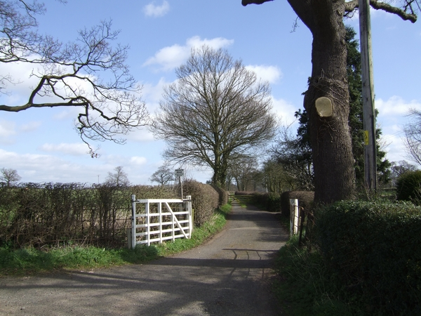 Private road leading to Wood House