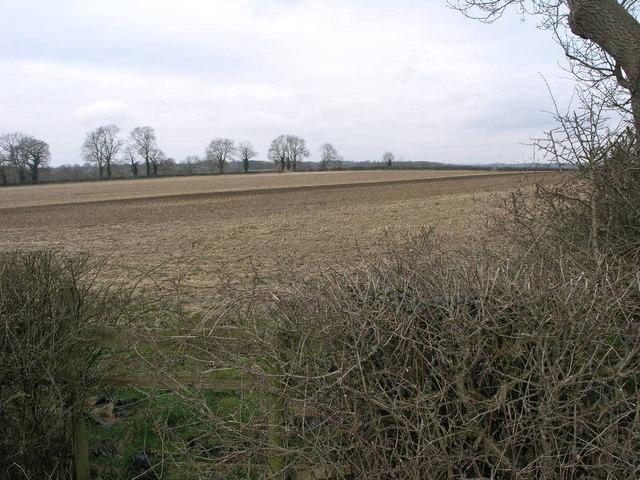 Foston Mill Farm