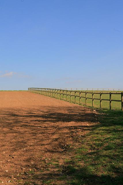 Paddock fence north of Whelpley Farm