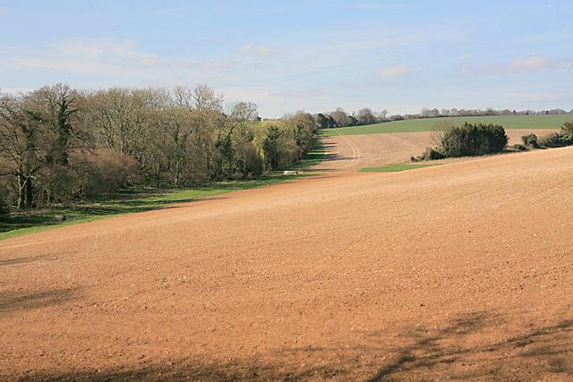 Farmland northwest of Whelpley Farm