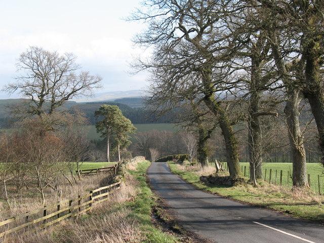 Country lane at Edgerston