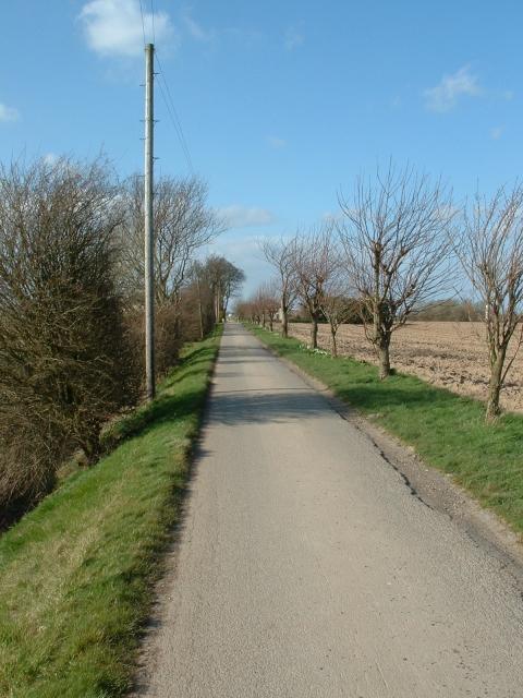Farm road near Curlew Lodge, Sutton Bridge
