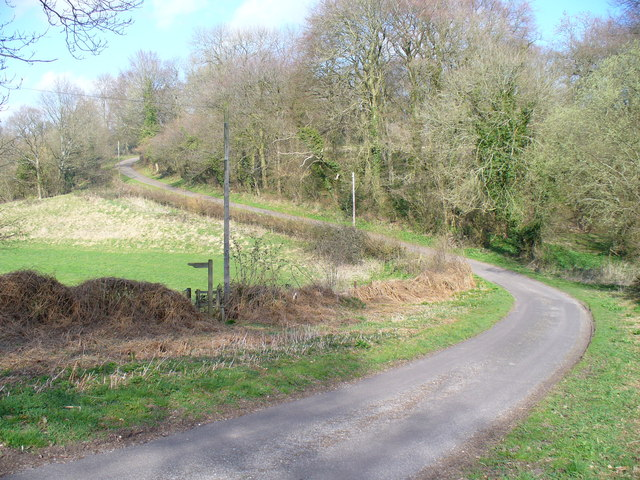 S-Bend North of Colemore Common
