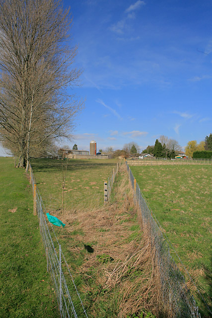 Looking at Tower Farm from footpath