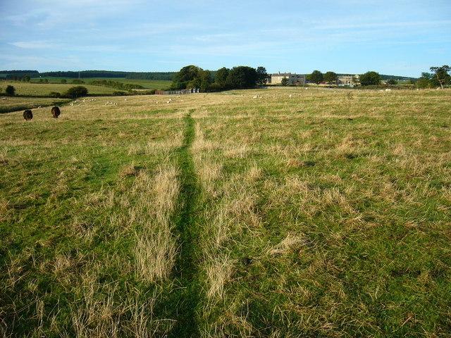 Looking to Broomley Village
