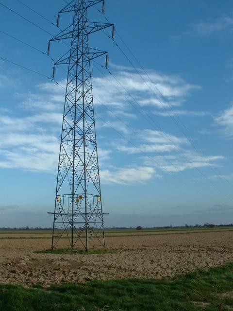Pylon, South Drove, Lutton Gowts.