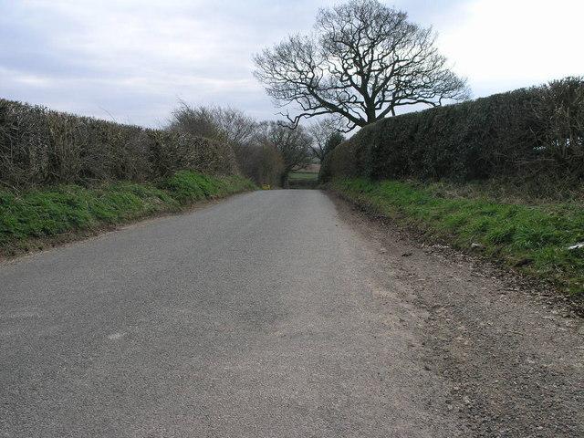 Corner Lane