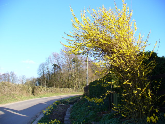 Country Lane, Inadown