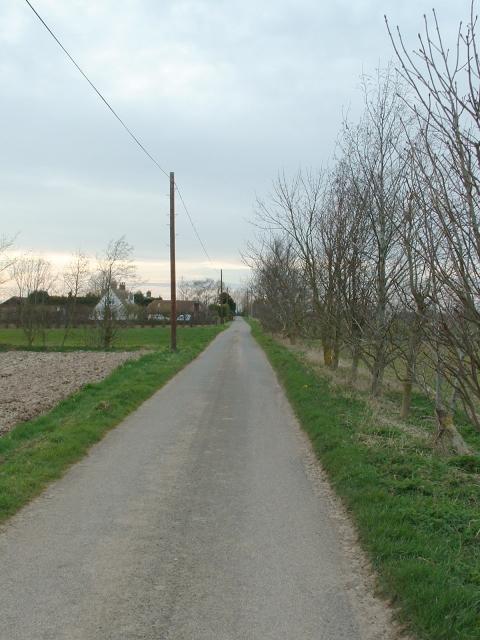 Lane near Sutton Bridge