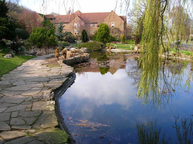 Pond, The Rookery, Preston Park