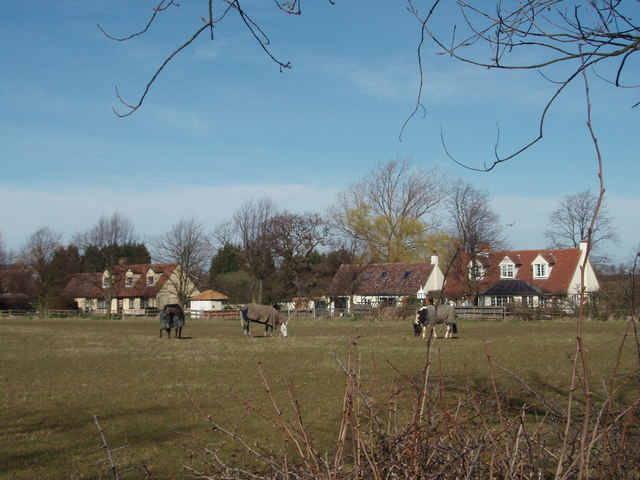 Horses and Houses