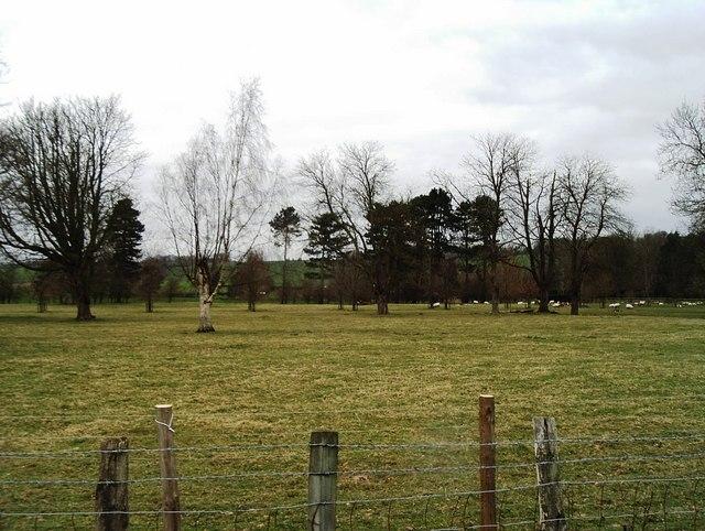 Grazing land at Ottinge