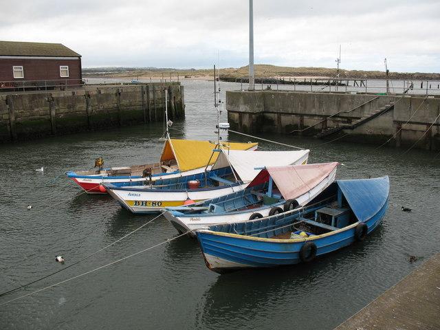 Cobles in Amble Harbour