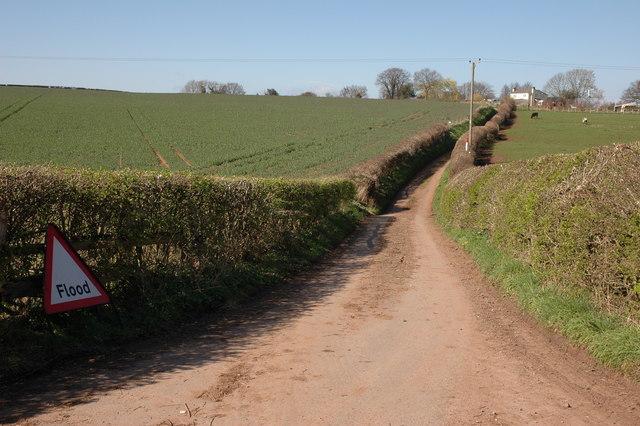 Lane to Brooms Green