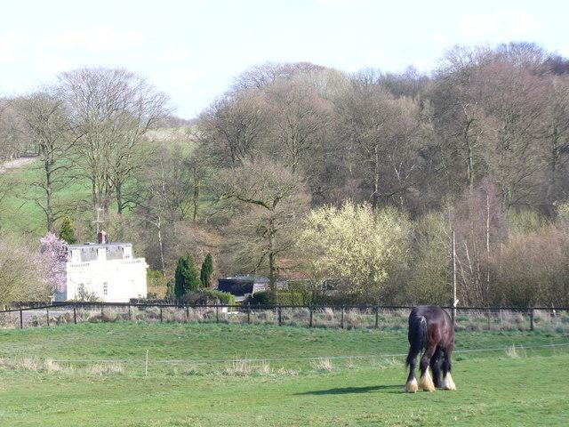 By Woodside Farm
