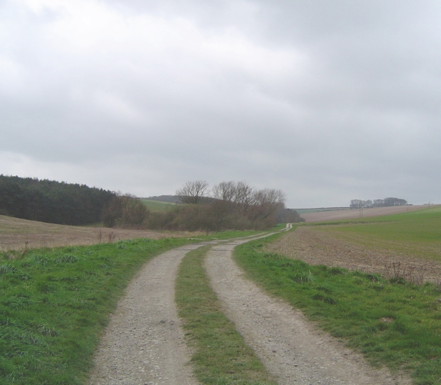 Wolds Bridleway