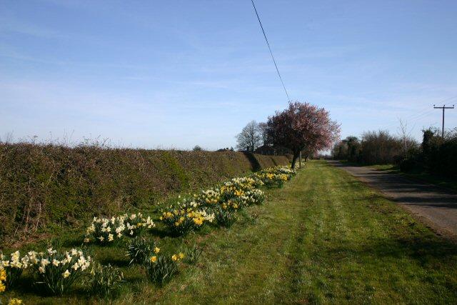 Road to Kenny Hill Farm