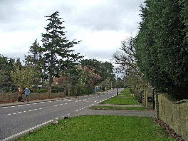 Beech Hill, Hadley Wood, looking east