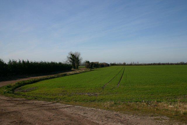Track near Alexandra House