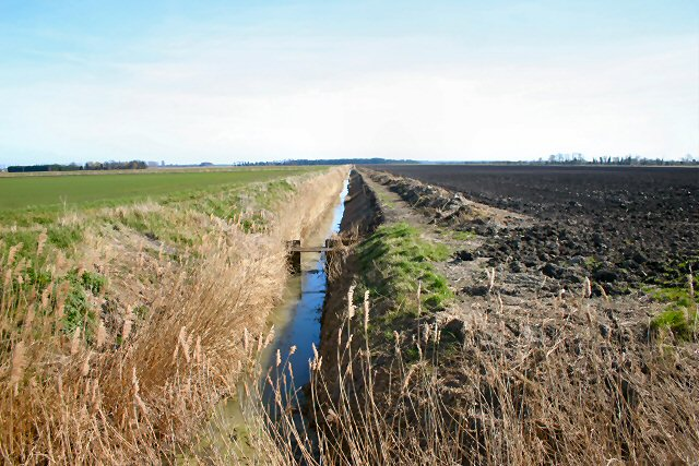 Fen farmland and ditch