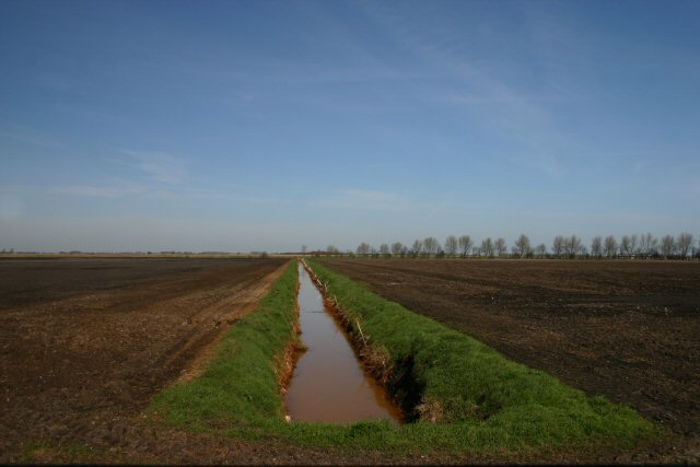 Fenland drain at Farthing Drove