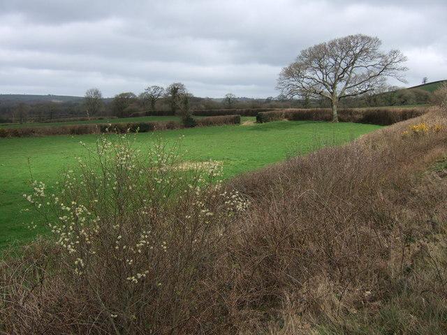 Fields beside the A30