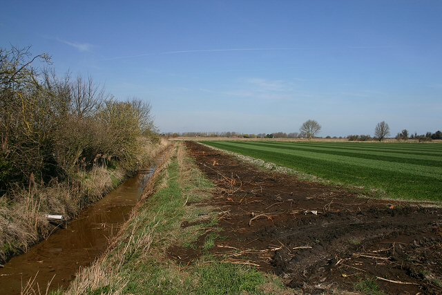 Field and ditch at Sedge Fen