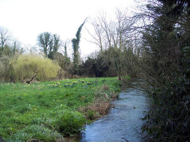 River Allen, Wimborne St Giles