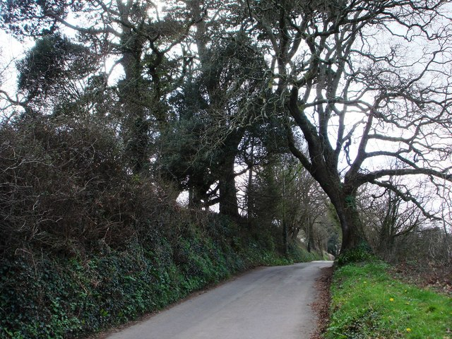 Greenway Road, Hook Bottom