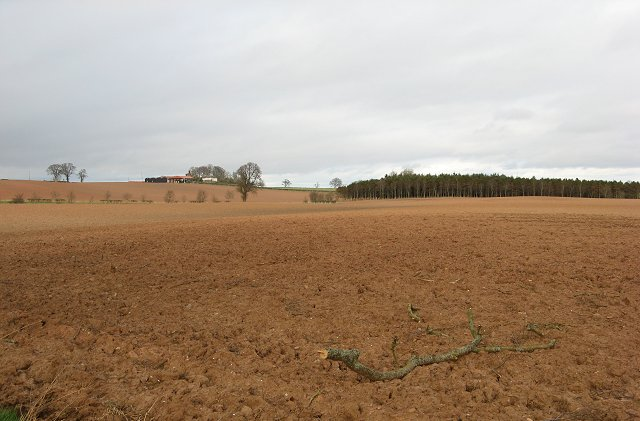 Ploughed field and storm debris.