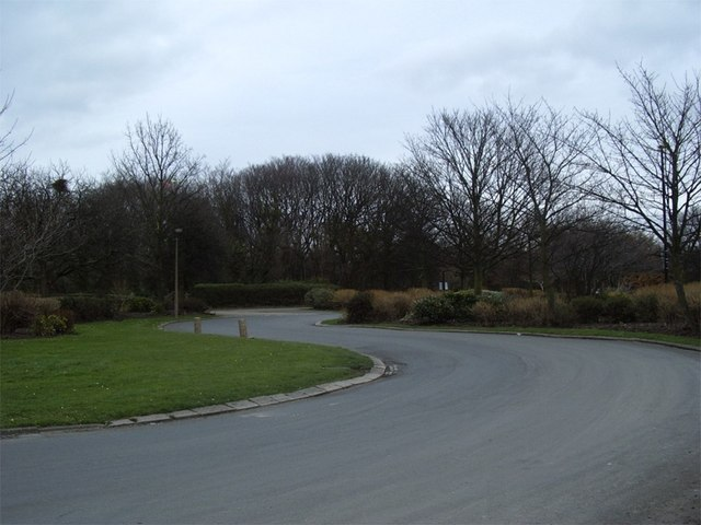 Road through Otterspool Park