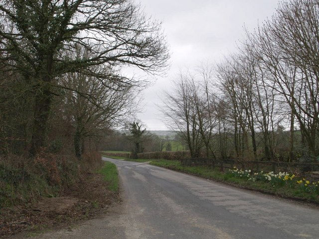 Lane near East Rowden